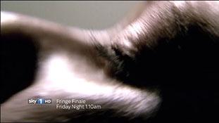 Fringe Season Finale Simulcast Trailer Sky1 HD.mp4-00024